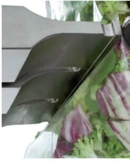 野菜シールホーンあり